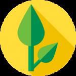 Health and Wellness Icon Image - Cannabis Education Providers | Holistic Cannabis Academy